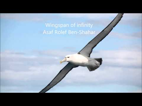 Winspan of Infinity