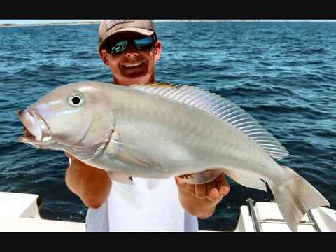 South Florida Deep Drop Fishing How To Intro