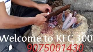 Chicken coating processor Kadaknath fat less chicken in India Maharashtra Aurangabad mh 20