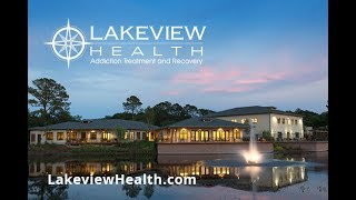 Lakeview Health Program Overview 2019