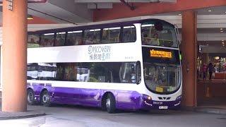 Hong Kong Buses - Discovery Bay and Kwoon Chung Roundup 2015