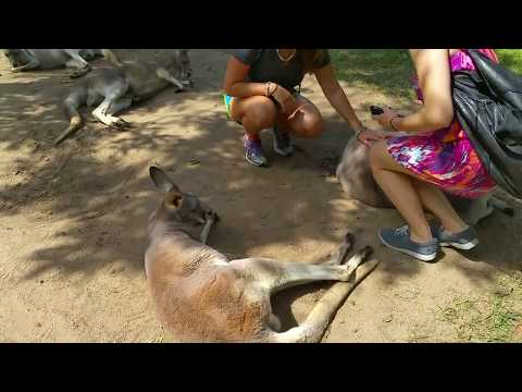 Australia Zoo Unedited