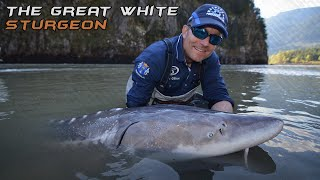 Wild Water Adventures part 28. - A big white sturgeon.