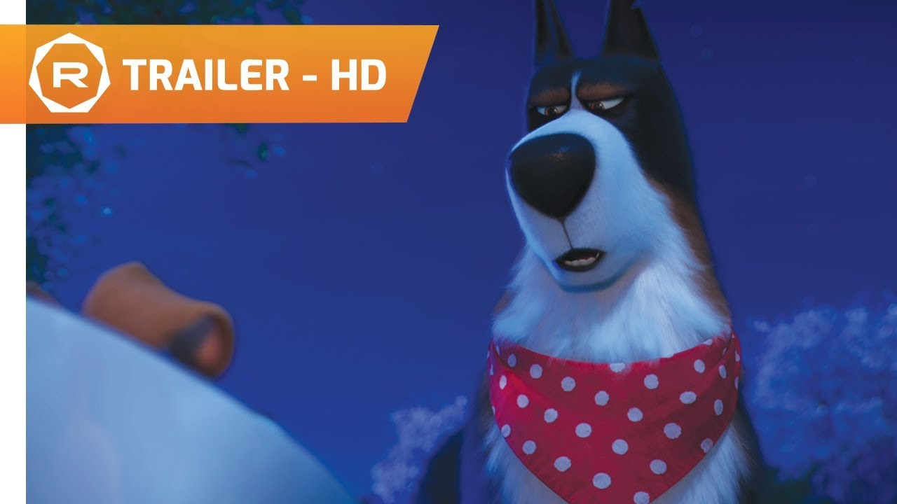 News Bytes New Secret Life Of Pets 2 Trailer Insights From