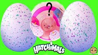 Ponette Pony Hatchimals Hatching Egg Surprise ! Interactive Baby Animals