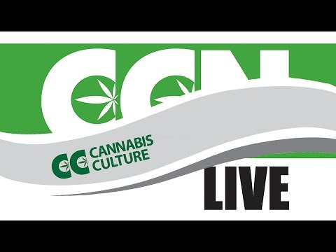 Cannabis Culture News LIVE: Pot in Port Coquitlam