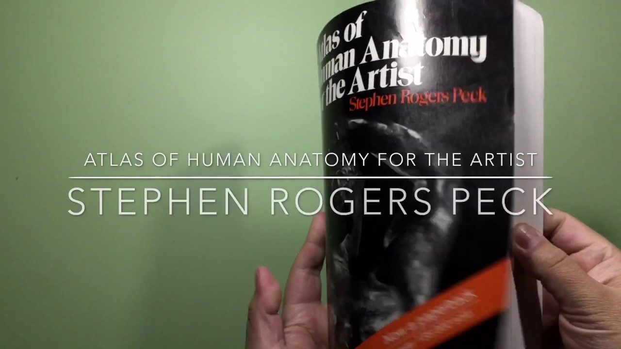 Atlas Of Human Anatomy For The Artist Stephen Rogers Peck Youtube