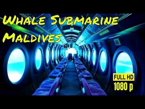 Whale Submarine Maldives || Maldives Submarine Tour || Price Location Review