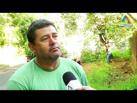 (JC 15/02/18) Secretaria Municipal de Meio Ambiente reforça serviço de poda e cortes de árvores.