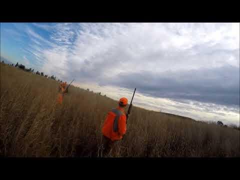 The 2017 Pennsylvania Pheasant Hunt