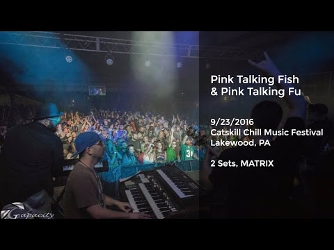 Pink Talking Fish and Kung Fu Live at Catskill Chill Music Festival 2016