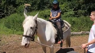 Horse Riding Lessons Videos for Beginners Kids Children with Music the First Time Getting On