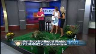 Pet Stop Invisible Dog Fence Jacksonville On Coastal Living - How It Works