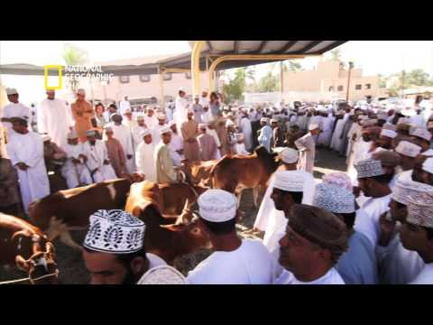 National Geographic Channel: World Traveller, Muscat & Nizwa