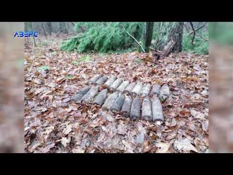 ТРК Аверс: Волинянин знайшов у лісі 19 артилерійських снаряди