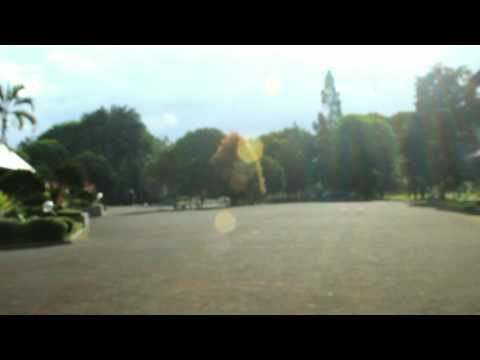 Video Prasetya Alumni TN XXIV : Sampai Jumpa