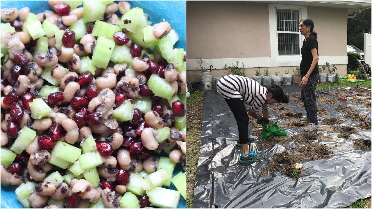 Gardening + Lazy Day Black-Eyed Pea Salad Video Recipe | Bhavna's Kitchen