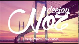 DJ Noz - Try (Colbie Calliat) [Cover by Danielle Bradbery] Tropical House VS Zouk Remix