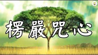 《楞嚴咒心》 快版 - 7遍 念誦示範