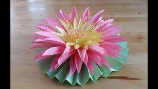 объемная  открытка с водяной лилией из бумаги. Как сделать бумажную кувшинку