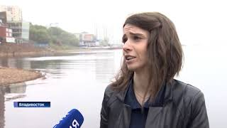 На фестивале мидий во Владивостоке повара удивляли туристов