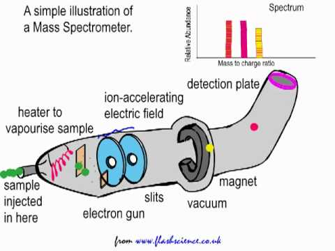 Schematic Diagram Of Mass Spectrometer 2016 F150 Trailer Wiring Simple Explanation The Youtube