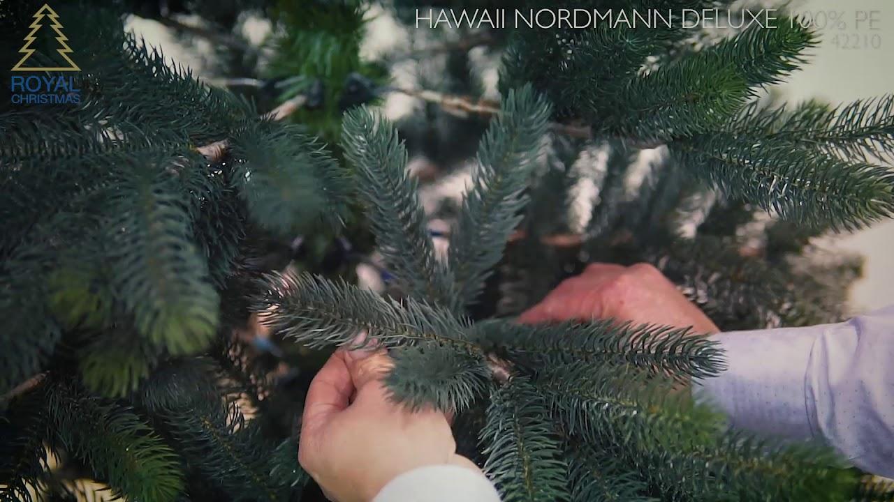 nordmann kerstboom 2020 Royal Christmas   Kunstkerstboom Hawaii Nordmann Deluxe 100% PE