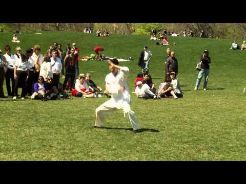 Master Longfei Yang Demonstrates Shanxi Style Praying Mantis in Central Park