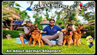 All About German Shepherd Dog Breed | Dr Kausik Ghosh | GSD Breed Standard | SCOOBERS