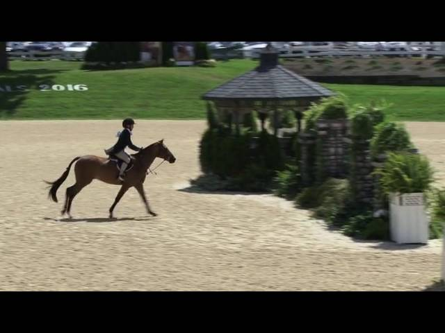 Video of BROWNLAND'S LAST CALL ridden by ALEXIS BAUMAN from ShowNet!