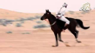 مهارات الفارس / مشعل بن ماجد  السرحاني  . فرسان الجوف