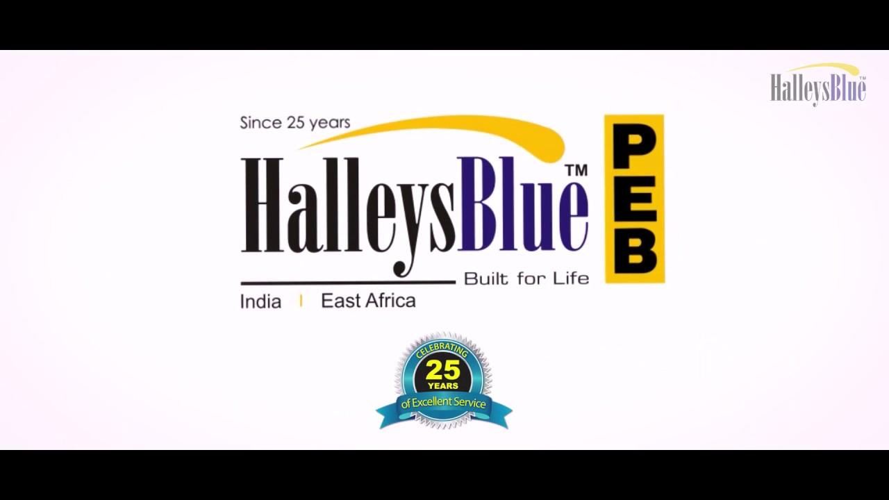 Image result for HalleysBlue Steels