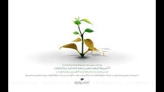 دواء نـافـع لـجـمـيـع الـبـلايـا | آية الله العظمى الشيخ محمد تقي بهجت