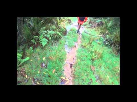 Hamilton to Pirongia - Te Araroa - The Long Pathway - Cape Reinga to Bluff 3054 KM