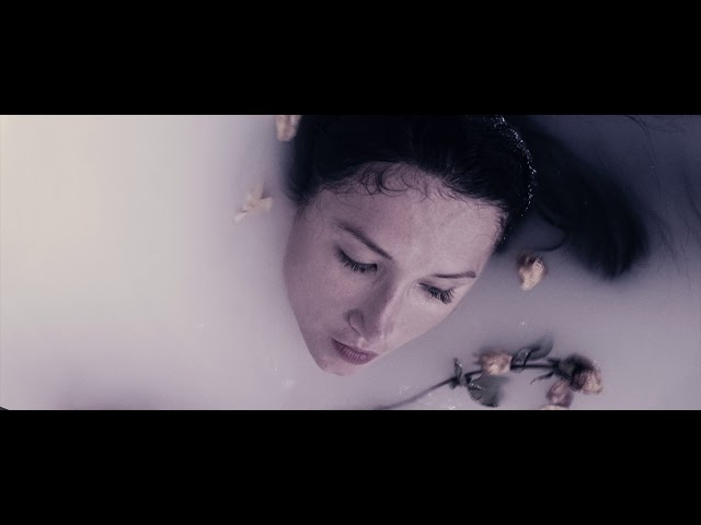 Evening Hymns - My Drugs, My Dreams (Official Video)