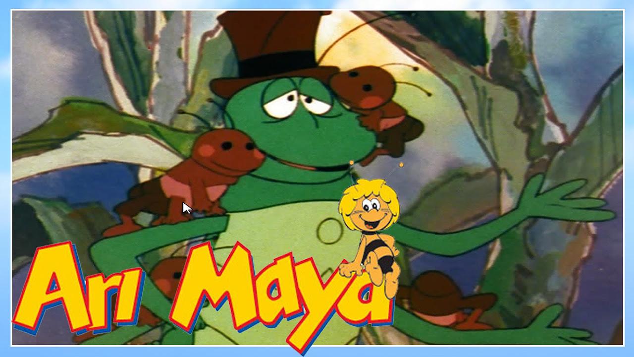 Arı Maya bölüm 29
