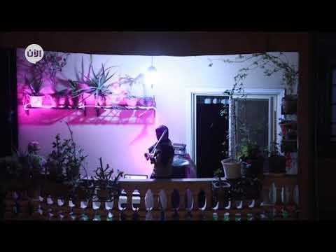 مصري يعزف الكمان من شرفة منزله لتسلية جيرانه خلال فترة حظر التجول  - نشر قبل 14 ساعة