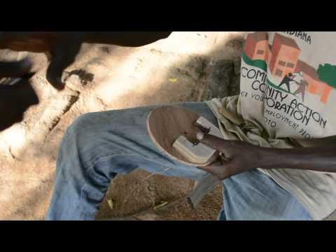 TREE Africa : Building Kalimba