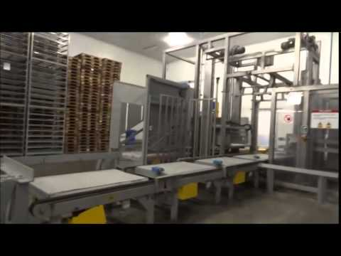 Fish Processing Plant: Tinman Travels South America