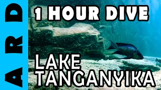 Popular Videos - Lake Tanganyika & Fishing