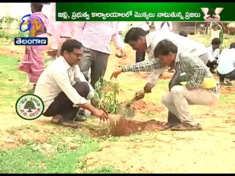 Fighting Global Warming; 'Tree plantation Going on in Several Areas in TS