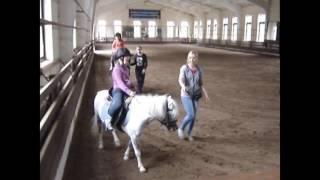 видео конный клуб в Подольске