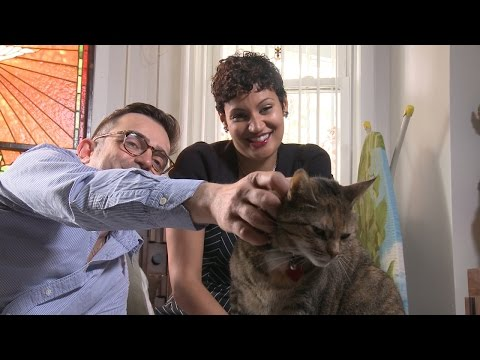 How Do You Like Meow: Is Pootie Still in Control?