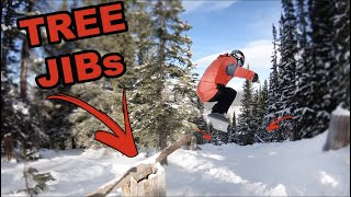 The Secret Tree Run at Copper Mountain! - (Season 4, Day 47)
