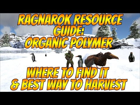 Ragnarok resource guide organic polymer and best method to harvest ragnarok resource guide organic polymer and best method to harvest most popular videos malvernweather Image collections