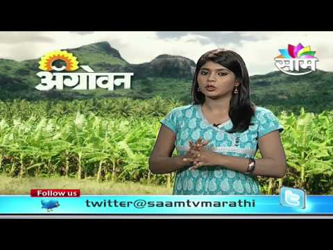 Harmful effects of Chemical Farming