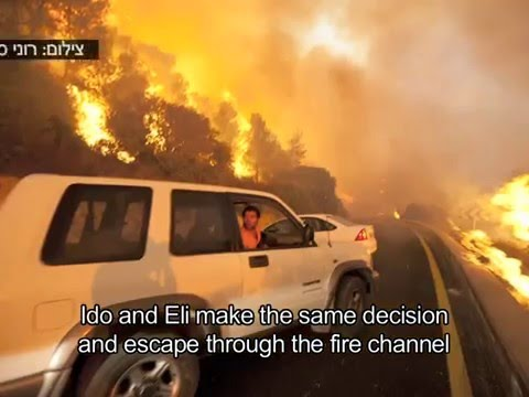 Mount Carmels Fire Disaster in Israel