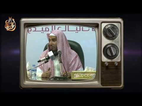 Download Al Hayat Media Live Stream Mp4 baru