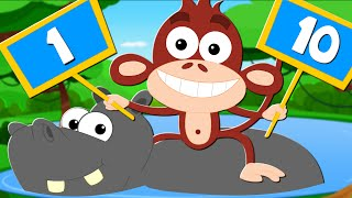 Animals Learn To Count | Learn To Count And Learn Numbers Songs For Kids And Baby | kids tv