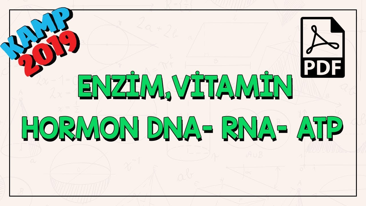Organik Bileşikler   Enzim, Vitamin, Hormon DNA- RNA - ATP